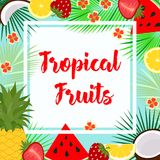 Card with tropical fruit Stock Images
