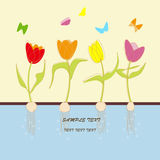 Card with tulip flowers royalty free illustration