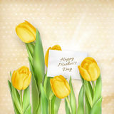 Card with Tulips. EPS 10 Royalty Free Stock Photography