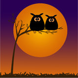 Card with two cute owls on the tree branch Royalty Free Stock Images