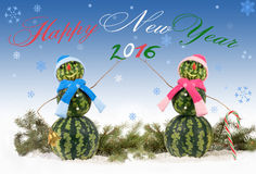 Card with two watermelon Snowman with inscription Happy New Years and 2016 Royalty Free Stock Photos