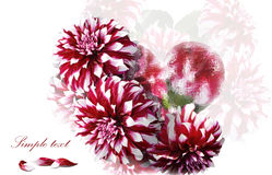 Card valentine Stock Photo