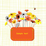 Card with vector stylized flowers. Calendula and camomile Stock Photos