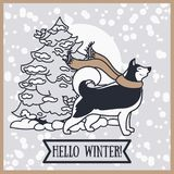 Card for winter with cute siberian husky and christmas tree. Vector illustration Stock Photos