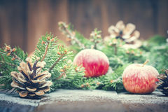 Card for the winter holidays Stock Photography