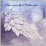 Christmas Card with Angel Wing Stock Images
