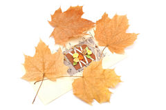 Card with yellow autumn leaves on a white background Royalty Free Stock Photos