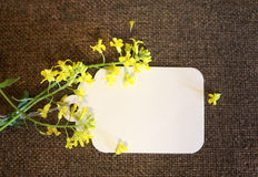 Card and yellow flowers Stock Photos