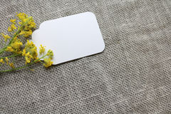 Card and yellow flowers Stock Image