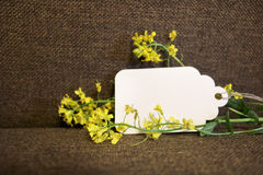 Card and yellow flowers Stock Photo