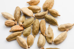 Cardamom. An important spice in Malaysian/ Asian dishes Stock Photo
