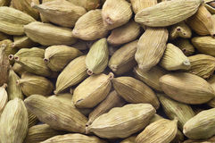 Cardamom Royalty Free Stock Photos