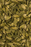 Cardamom Background. Cardamom green spice group Background stock photography