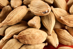 Cardamom background Royalty Free Stock Image