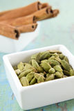 Cardamom and cinnamon Stock Images
