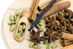 Cardamom with cinnamon and chinese anise Stock Image