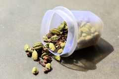 Cardamom and cloves Royalty Free Stock Photography