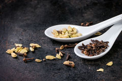 Cardamom and cloves Stock Photo