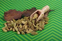 Cardamom on a green background Royalty Free Stock Images