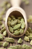 Cardamom green seeds superfood ayurveda spice in a. Wooden shovel on vintage background stock images