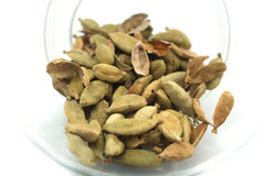 Cardamom Stock Photography