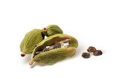 Cardamom pods Stock Photos