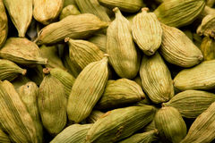 Cardamom Pods Stock Photography