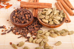 Cardamom pods and cloves Royalty Free Stock Photography