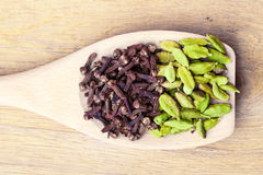 Cardamom pods and cloves on wooden spoon Stock Images