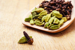 Cardamom pods and cloves on wooden spoon Royalty Free Stock Photography
