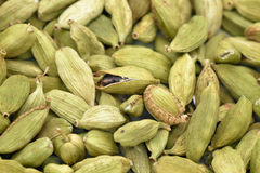Cardamom pods dried Royalty Free Stock Photography