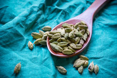 Cardamom pods Stock Images