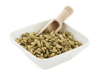 Cardamom pods in square bowl with wooden shovel Royalty Free Stock Photography