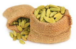Cardamom seed in sack Stock Photography