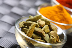 Cardamom seedpods and spices Stock Photography