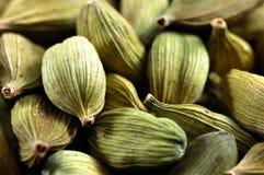 Cardamom seeds stock image