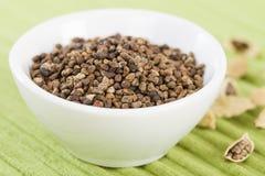 Cardamom Seeds Stock Photos