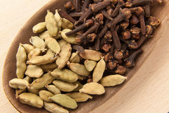 Cardamom seeds and cloves Stock Images