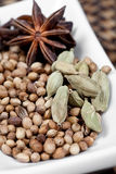 Cardamom seeds with coriander and star anise Royalty Free Stock Photo