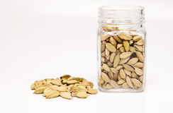 Cardamom seeds Royalty Free Stock Photo