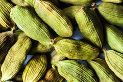 Cardamom seeds macro Stock Photography
