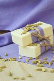 Cardamom soap Royalty Free Stock Image