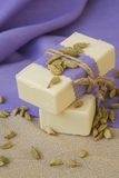 Cardamom soap Stock Photography