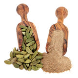 Cardamom  Spice Royalty Free Stock Images