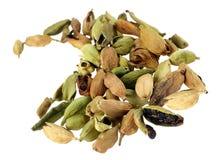 Cardamom spice Stock Image