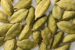 Cardamom. Spicy cardamom seeds close-up. Macro Royalty Free Stock Photos