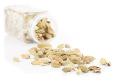 Cardamom spilled from plastic container,  Stock Photos
