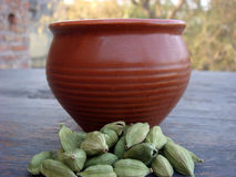 Cardamom and tea cup on focus. Homemade cardamom tea on focus Stock Image