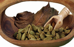 Cardamom. True or green cardamom is distributed from India to Malaysia. Cardamom has a strong, unique taste, with an intensely aromatic, resinous fragrance Royalty Free Stock Photos