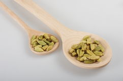 Cardamom in two wooden spoons. True or green cardamom is distributed from India to Malaysia. Cardamom has a strong, unique taste, with an intensely aromatic Stock Image